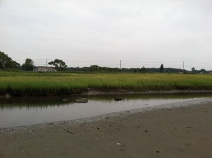 Still low tide in Old Saybrook